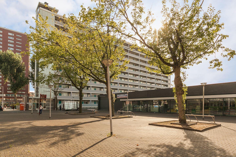 Plein 1953, Rotterdam